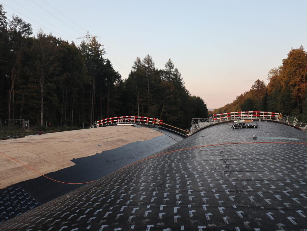 Wildtierbrücke